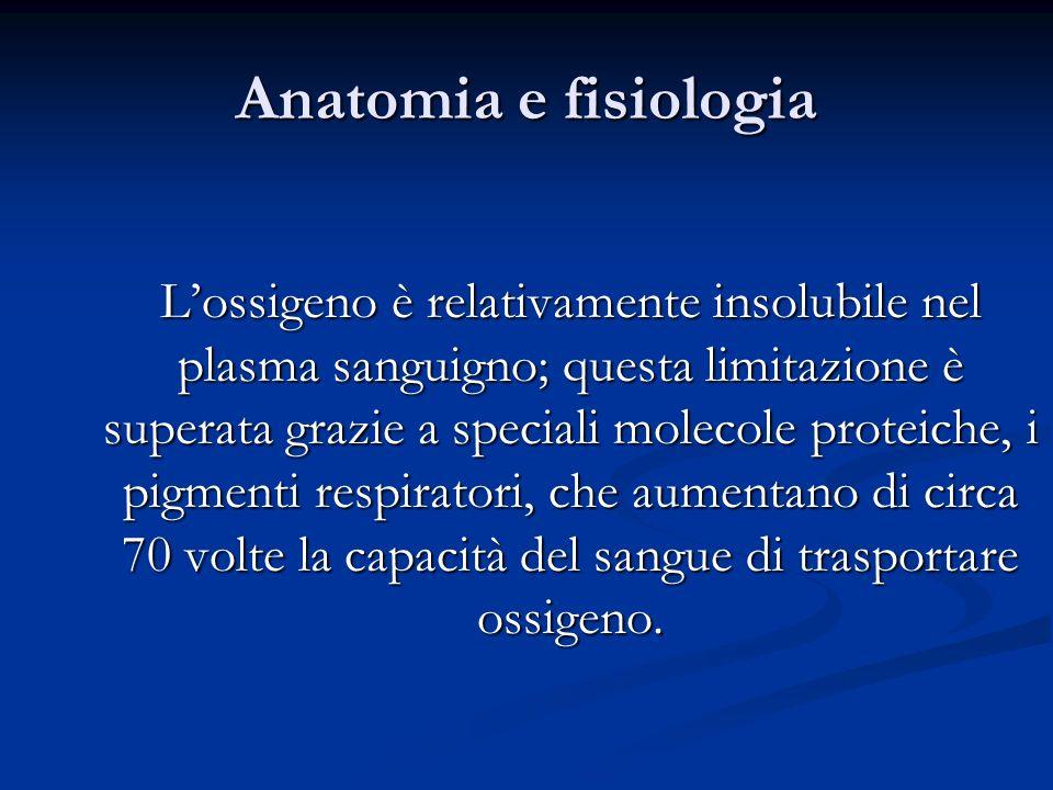 Anatomia e fisiologia Lossigeno è relativamente insolubile nel plasma sanguigno; questa limitazione è superata grazie a speciali molecole proteiche, i