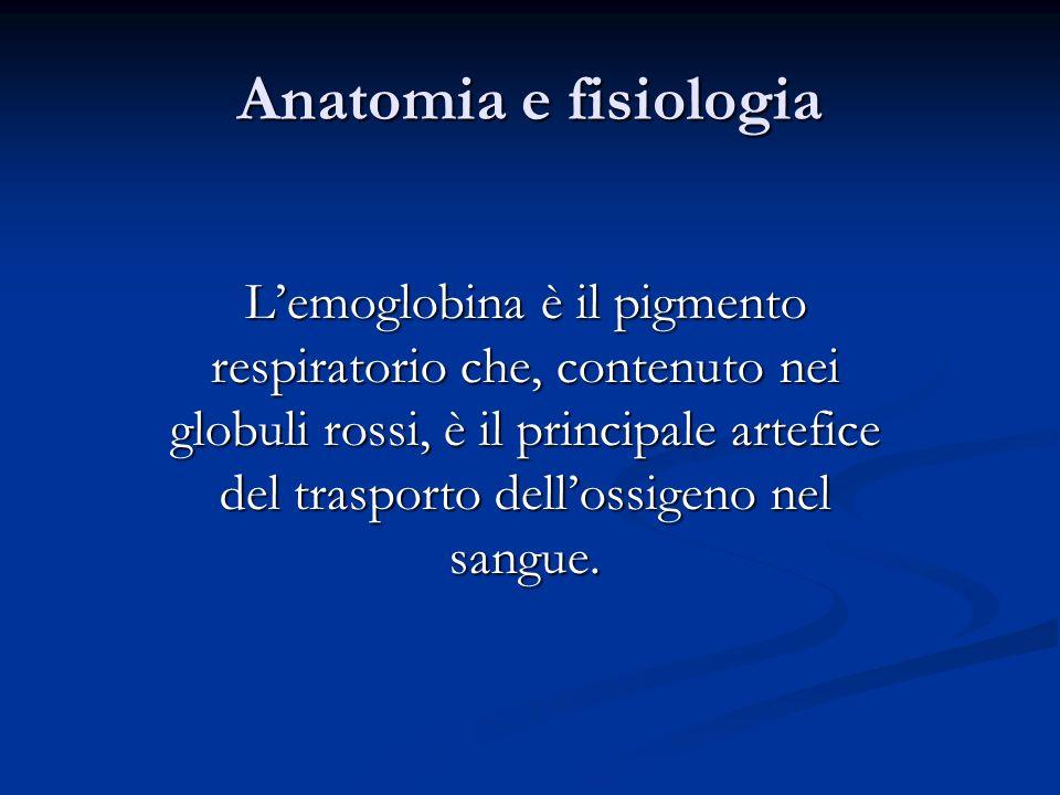 Anatomia e fisiologia Lemoglobina è il pigmento respiratorio che, contenuto nei globuli rossi, è il principale artefice del trasporto dellossigeno nel
