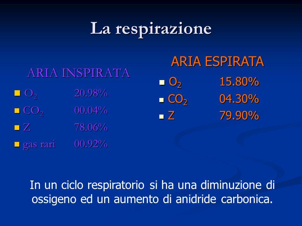 La respirazione ARIA INSPIRATA O 2 20.98% O 2 20.98% CO 2 00.04% CO 2 00.04% Z78.06% Z78.06% gas rari00.92% gas rari00.92% ARIA ESPIRATA O 2 15.80% O