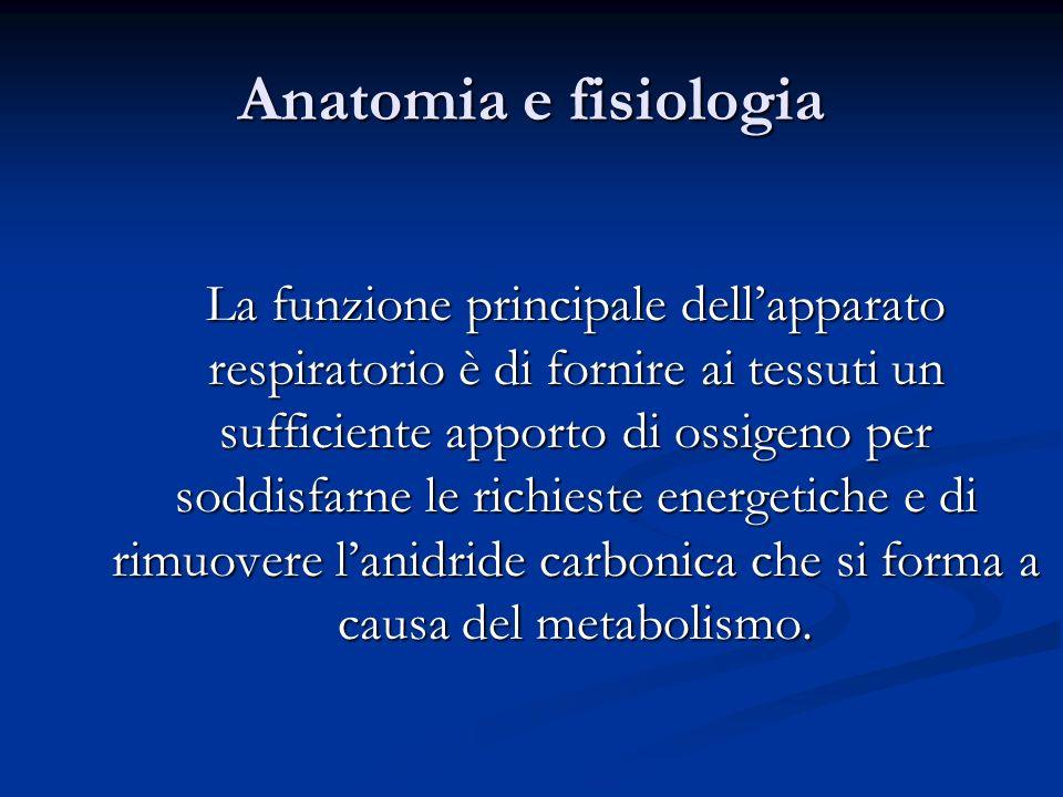 Anatomia e fisiologia La funzione principale dellapparato respiratorio è di fornire ai tessuti un sufficiente apporto di ossigeno per soddisfarne le r