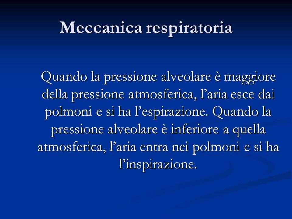 Meccanica respiratoria Quando la pressione alveolare è maggiore della pressione atmosferica, laria esce dai polmoni e si ha lespirazione. Quando la pr