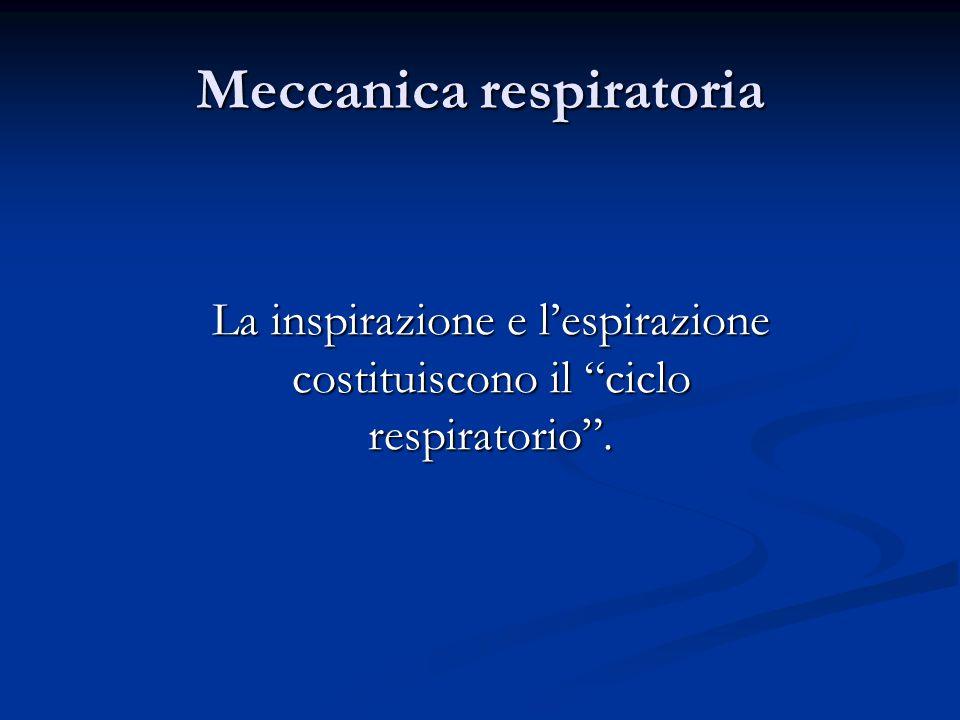 Meccanica respiratoria La inspirazione e lespirazione costituiscono il ciclo respiratorio.