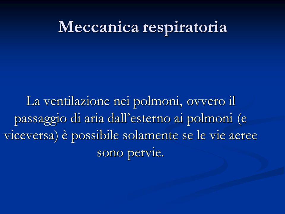 Meccanica respiratoria La ventilazione nei polmoni, ovvero il passaggio di aria dallesterno ai polmoni (e viceversa) è possibile solamente se le vie a