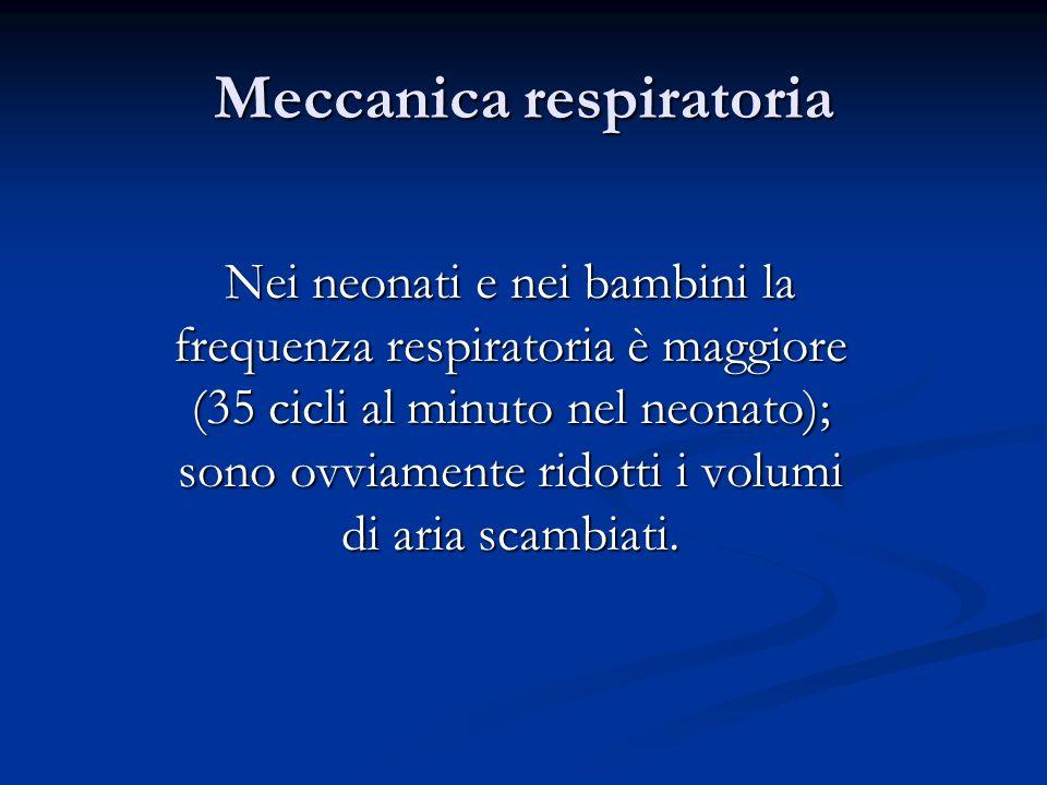 Meccanica respiratoria Nei neonati e nei bambini la frequenza respiratoria è maggiore (35 cicli al minuto nel neonato); sono ovviamente ridotti i volu
