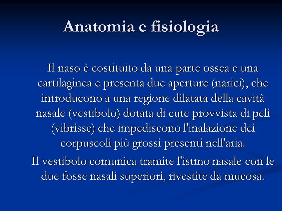 Anatomia e fisiologia Il naso è costituito da una parte ossea e una cartilaginea e presenta due aperture (narici), che introducono a una regione dilat