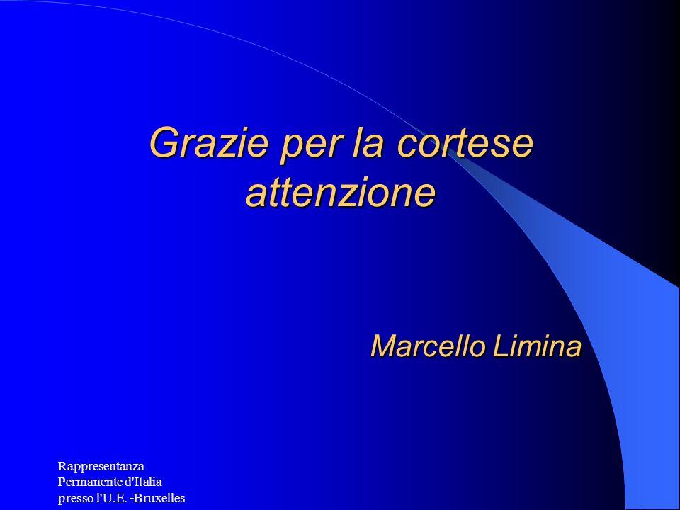 Rappresentanza Permanente d'Italia presso l'U.E. -Bruxelles Grazie per la cortese attenzione Marcello Limina