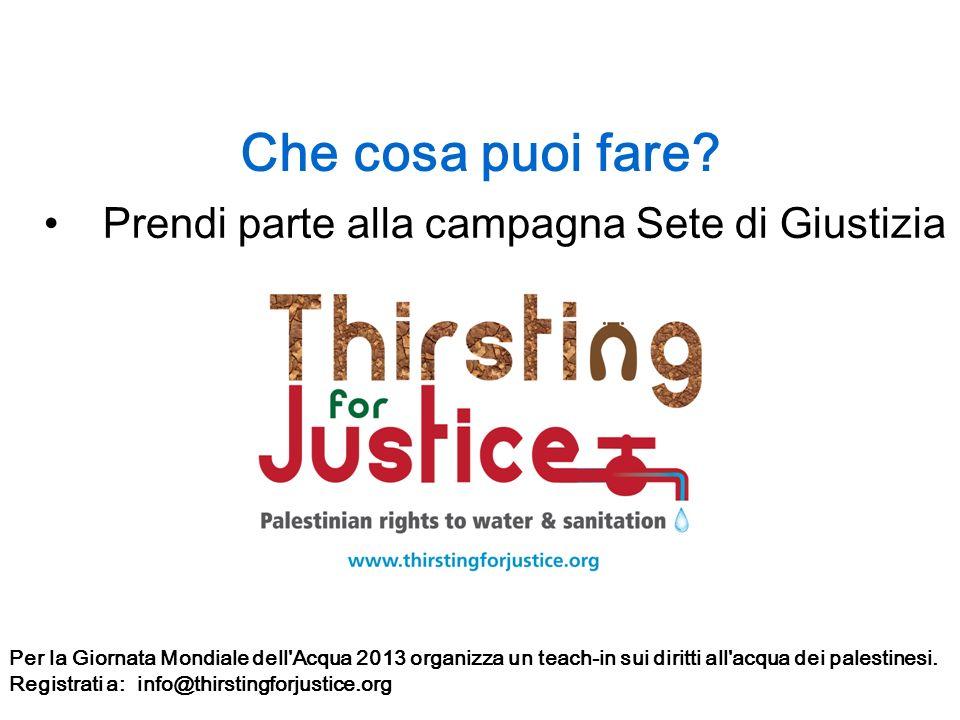 Che cosa puoi fare? Prendi parte alla campagna Sete di Giustizia Per la Giornata Mondiale dell'Acqua 2013 organizza un teach-in sui diritti all'acqua