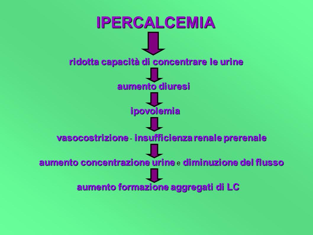 IPERCALCEMIA ridotta capacità di concentrare le urine aumentodiuresi aumento diuresi ipovolemia vasocostrizioneinsufficienzarenaleprerenale vasocostri