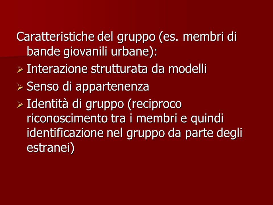 Caratteristiche del gruppo (es. membri di bande giovanili urbane): Interazione strutturata da modelli Interazione strutturata da modelli Senso di appa