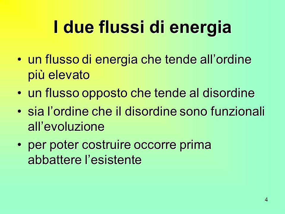 4 I due flussi di energia un flusso di energia che tende allordine più elevatoun flusso di energia che tende allordine più elevato un flusso opposto c