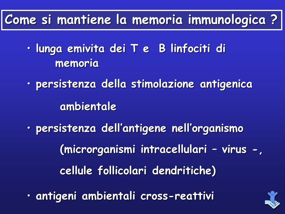 lunga emivita dei T e B linfociti di memoria lunga emivita dei T e B linfociti di memoria persistenza della stimolazione antigenica ambientale persist