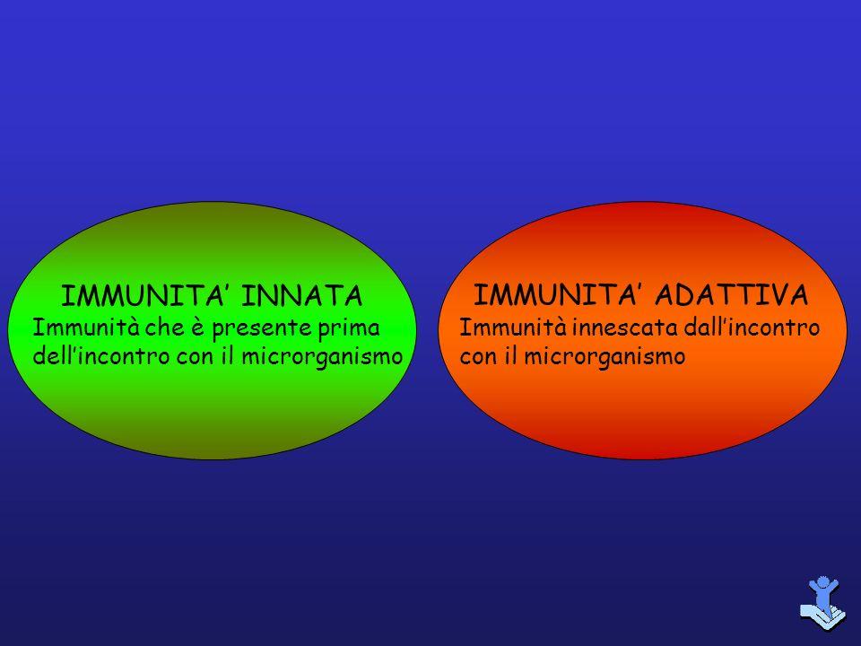 IMMUNITA INNATA Immunità che è presente prima dellincontro con il microrganismo IMMUNITA ADATTIVA Immunità innescata dallincontro con il microrganismo