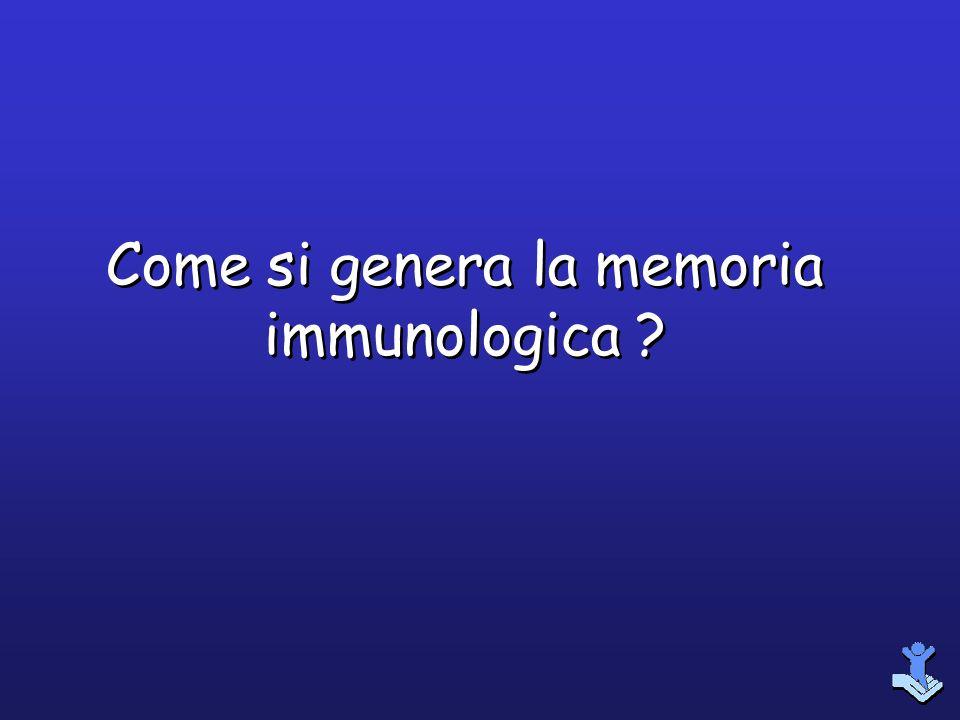 Come si genera la memoria immunologica ?