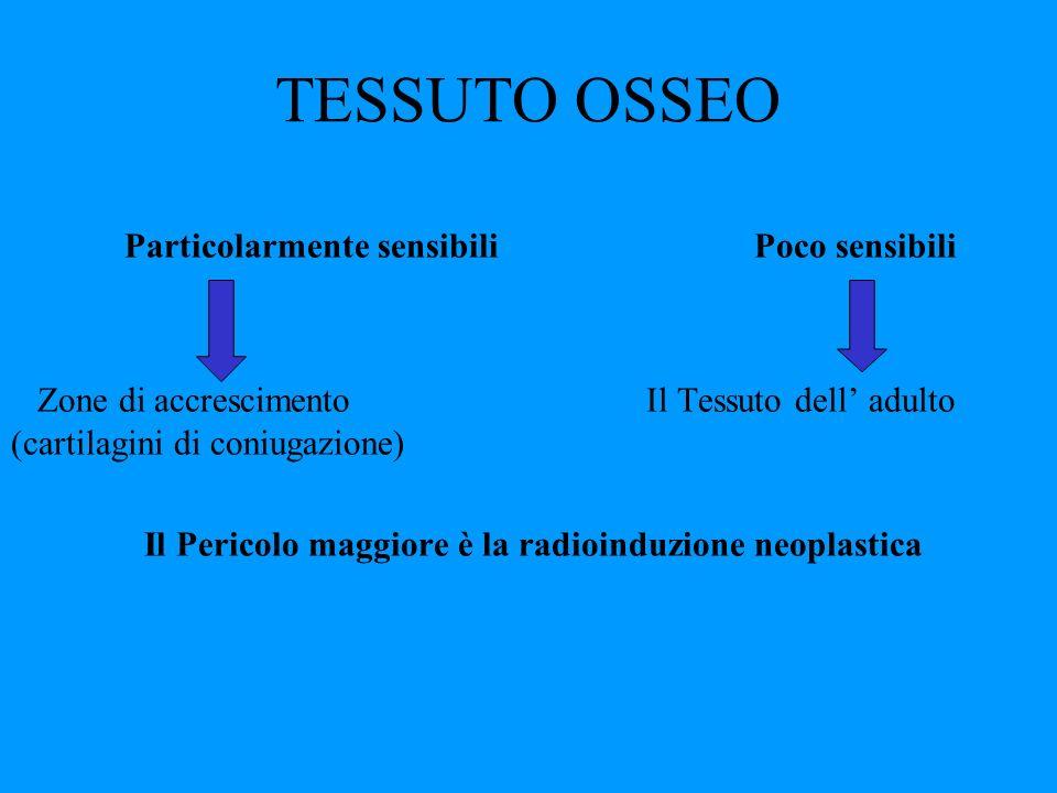 TESSUTO OSSEO Particolarmente sensibili Poco sensibili Zone di accrescimento Il Tessuto dell adulto (cartilagini di coniugazione) Il Pericolo maggiore