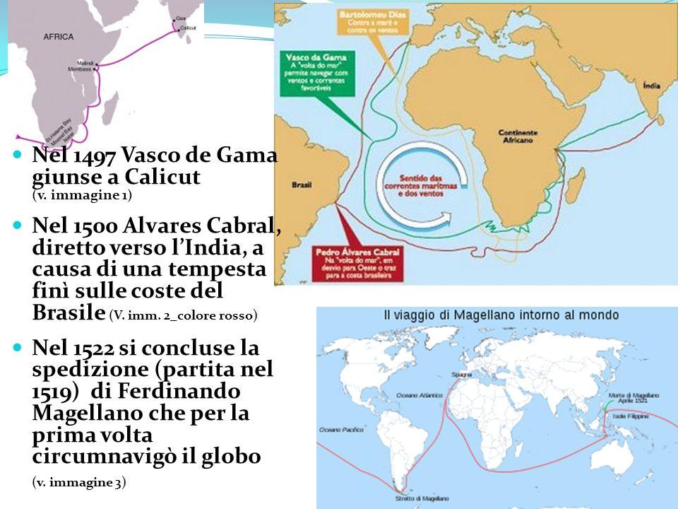 Nel 1497 Vasco de Gama giunse a Calicut (v. immagine 1) Nel 1500 Alvares Cabral, diretto verso lIndia, a causa di una tempesta finì sulle coste del Br
