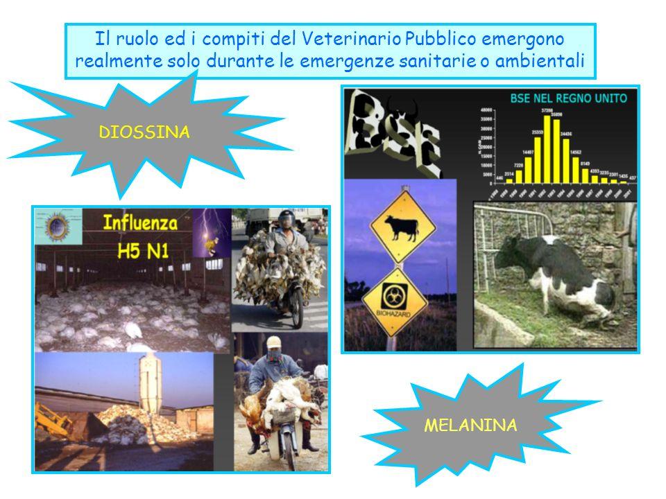 Il ruolo ed i compiti del Veterinario Pubblico emergono realmente solo durante le emergenze sanitarie o ambientali DIOSSINAMELANINA