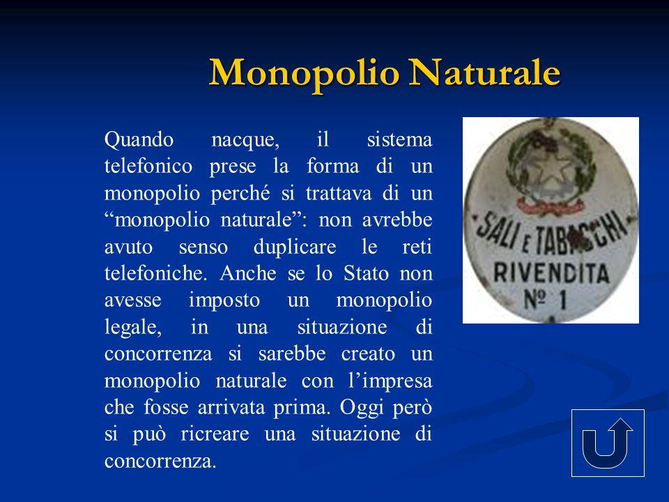 Quando nacque, il sistema telefonico prese la forma di un monopolio perché si trattava di un monopolio naturale: non avrebbe avuto senso duplicare le
