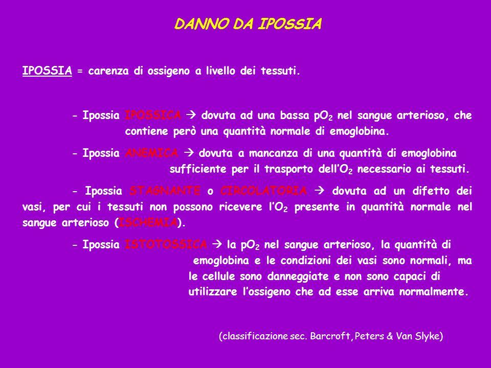 DANNO DA IPOSSIA IPOSSIA = carenza di ossigeno a livello dei tessuti. - Ipossia IPOSSICA dovuta ad una bassa pO 2 nel sangue arterioso, che contiene p
