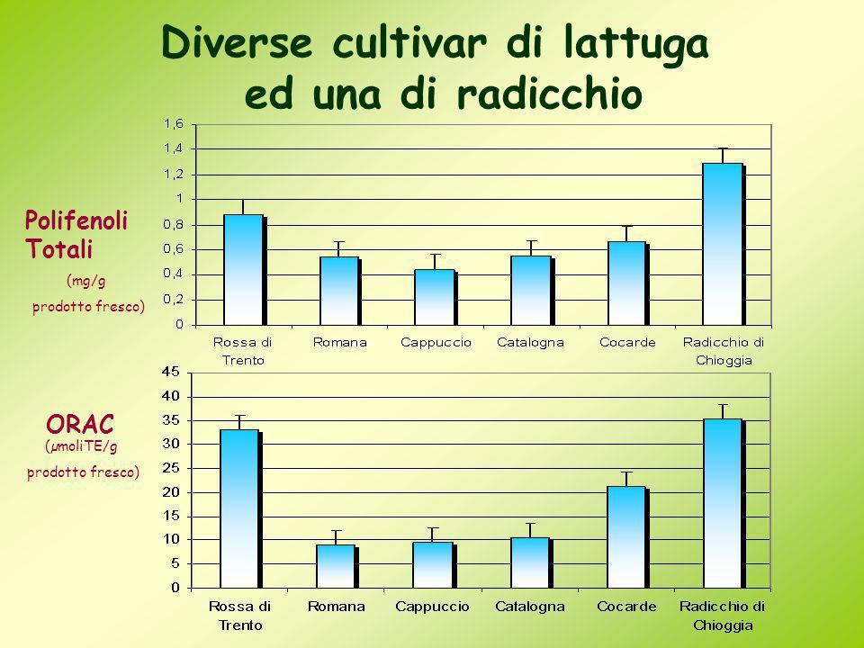 Diverse cultivar di lattuga ed una di radicchio * * (mg/g prodotto fresco) Polifenoli Totali (µmoliTE/g prodotto fresco) ORAC