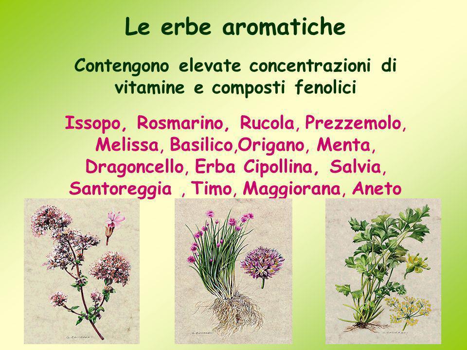 Le erbe aromatiche Contengono elevate concentrazioni di vitamine e composti fenolici Issopo, Rosmarino, Rucola, Prezzemolo, Melissa, Basilico,Origano,