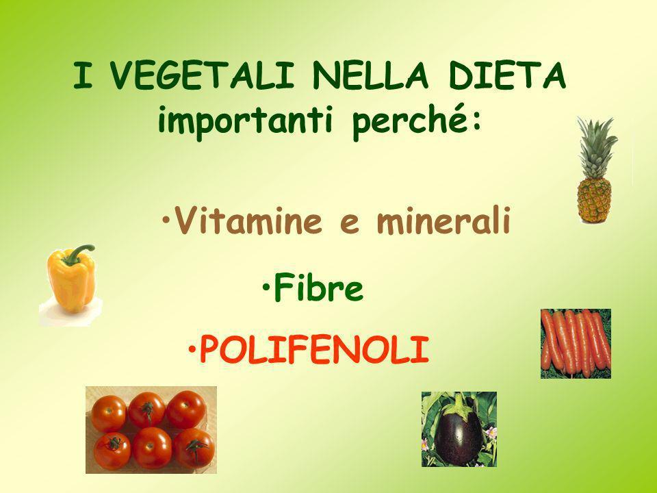 I VEGETALI NELLA DIETA importanti perché: Vitamine e minerali Fibre POLIFENOLI