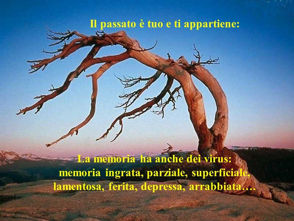 Il passato è tuo e ti appartiene: La memoria ha anche dei virus: memoria ingrata, parziale, superficiale, lamentosa, ferita, depressa, arrabbiata….