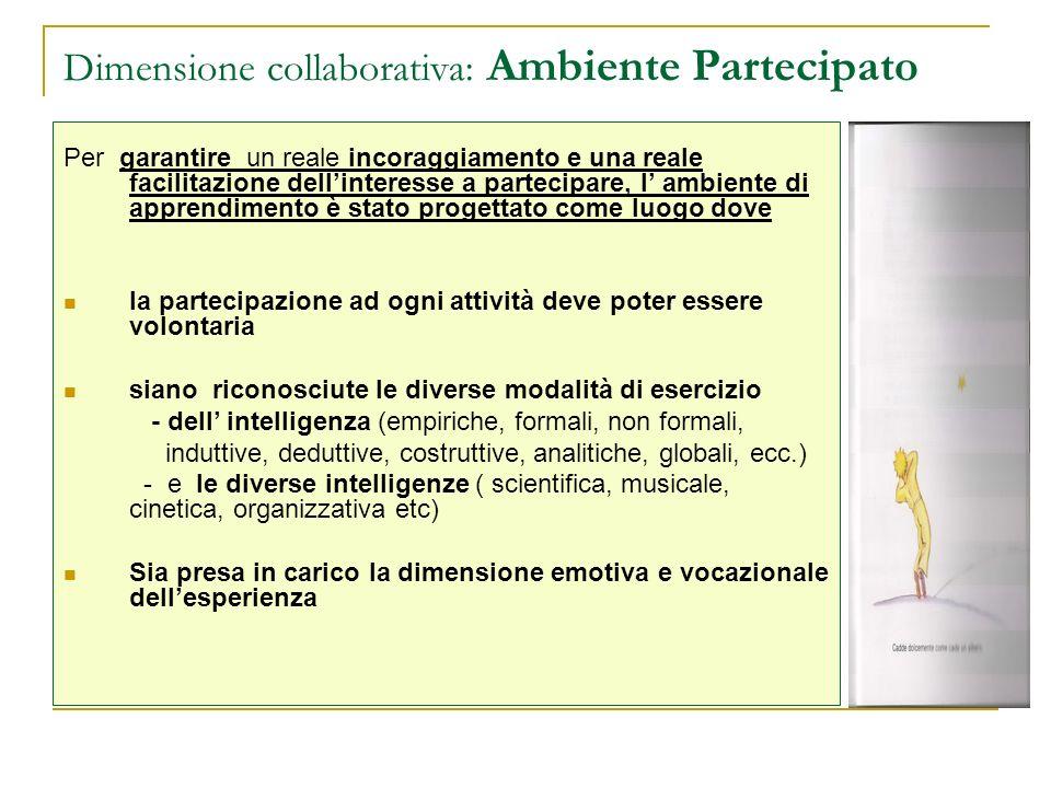 Dimensione collaborativa: Ambiente Partecipato Per garantire un reale incoraggiamento e una reale facilitazione dellinteresse a partecipare, l ambient