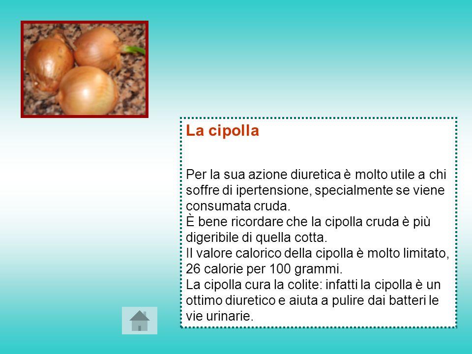 I Fagioli I fagioli abbassano il colesterolo e contengono sostanze che proteggendo dalla comparsa di tumori al seno e al colon.