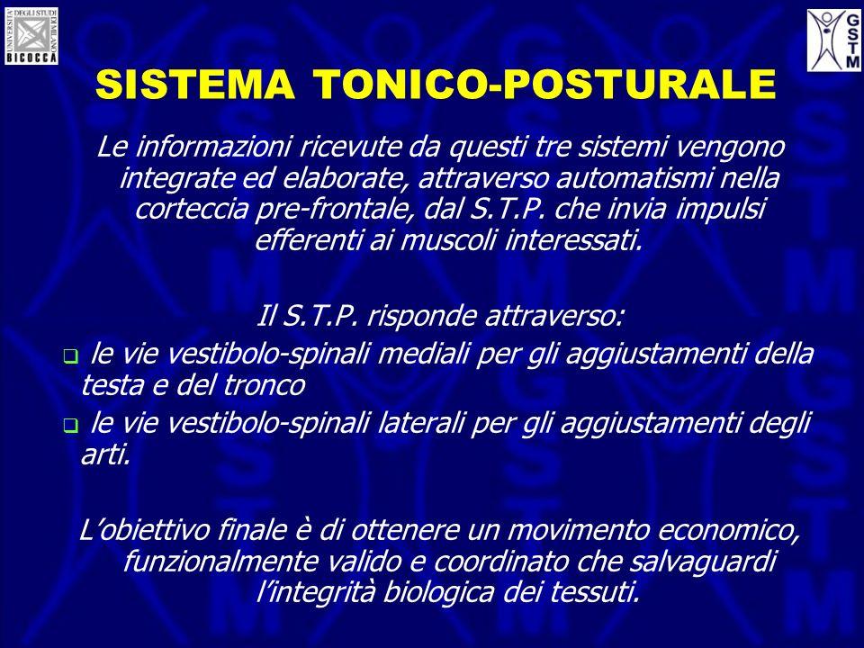 SISTEMA TONICO-POSTURALE Le informazioni ricevute da questi tre sistemi vengono integrate ed elaborate, attraverso automatismi nella corteccia pre-fro