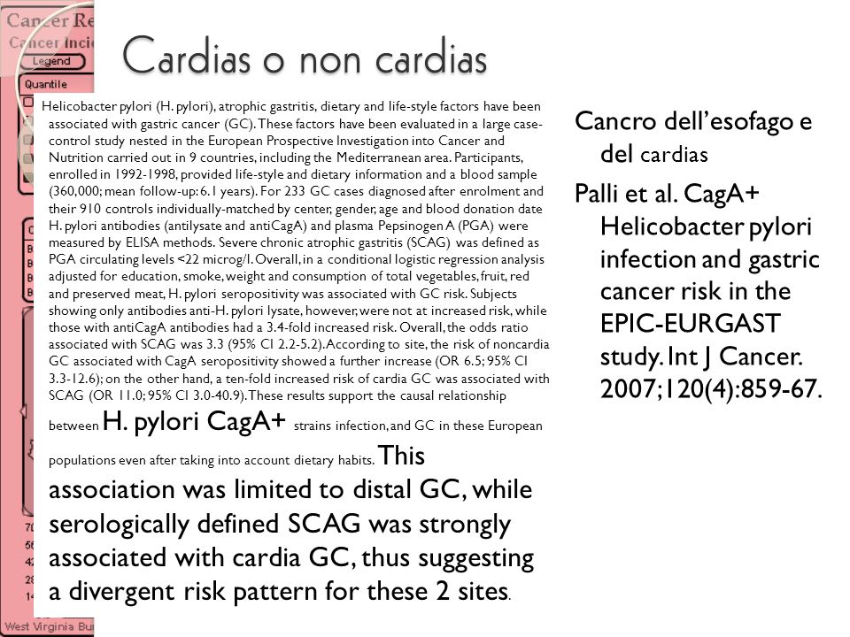 Cardias o non cardias Cancro dellesofago e del cardias Palli et al. CagA+ Helicobacter pylori infection and gastric cancer risk in the EPIC-EURGAST st
