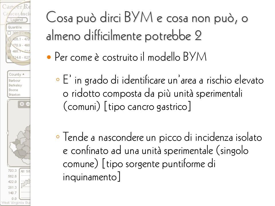 Cosa può dirci BYM e cosa non può, o almeno difficilmente potrebbe 2 Per come è costruito il modello BYM E in grado di identificare unarea a rischio e