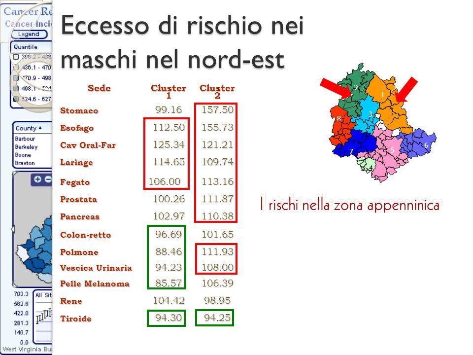 Eccesso di rischio nei maschi nel nord-est SedeCluster1 Cluster 2 Stomaco99.16157.50 Esofago112.50155.73 Cav Oral-Far 125.34121.21 Laringe114.65109.74