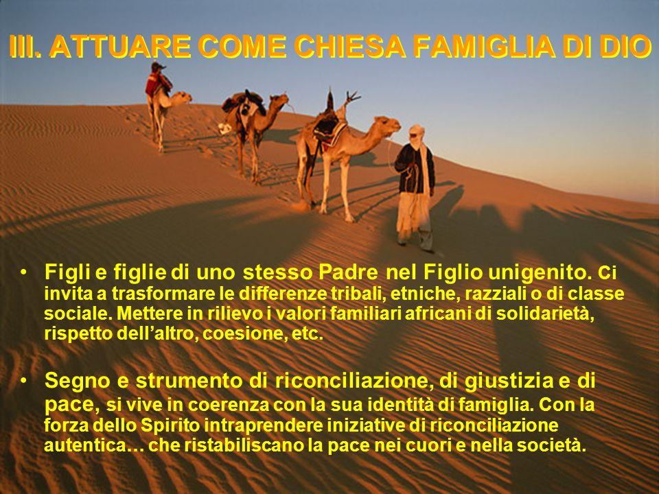 IV.IMPEGNARSI PER UNAFRICA RICONCILIATA La Chiesa Famiglia per le Nazioni.