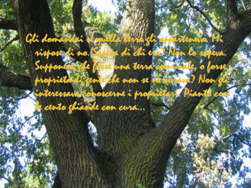 …se si teneva a mente che era tutto scaturito dalle mani e dallanima di quelluomo, senza mezzi tecnici, si comprendeva come gli uomini potrebbero essere altrettanto efficaci di Dio in altri campi oltre alla distruzione…