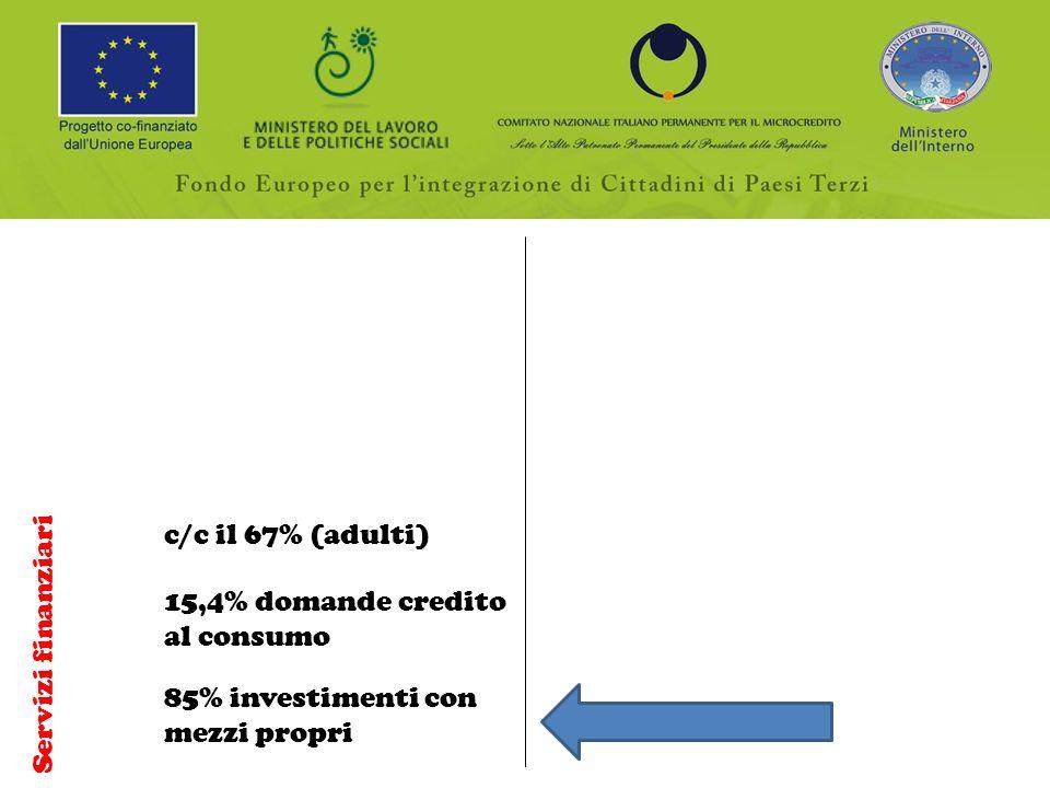 Servizi finanziari c/c il 67% (adulti) 15,4% domande credito al consumo 85% investimenti con mezzi propri