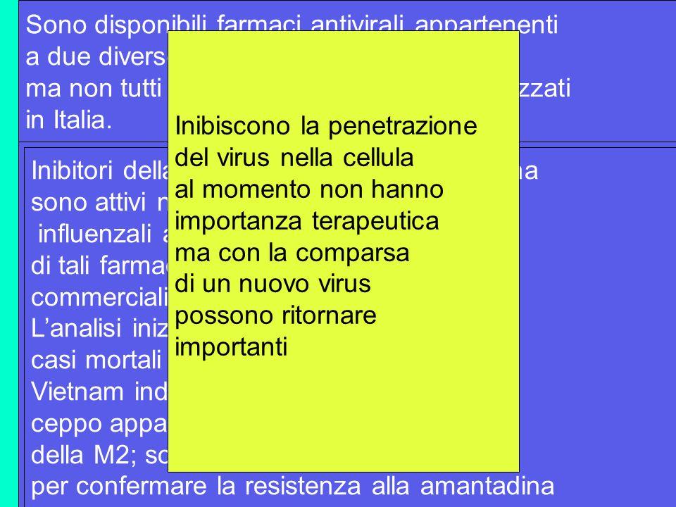 Sono disponibili farmaci antivirali appartenenti a due diverse classi, ma non tutti sono attualmente commercializzati in Italia. Inibitori della M2: a