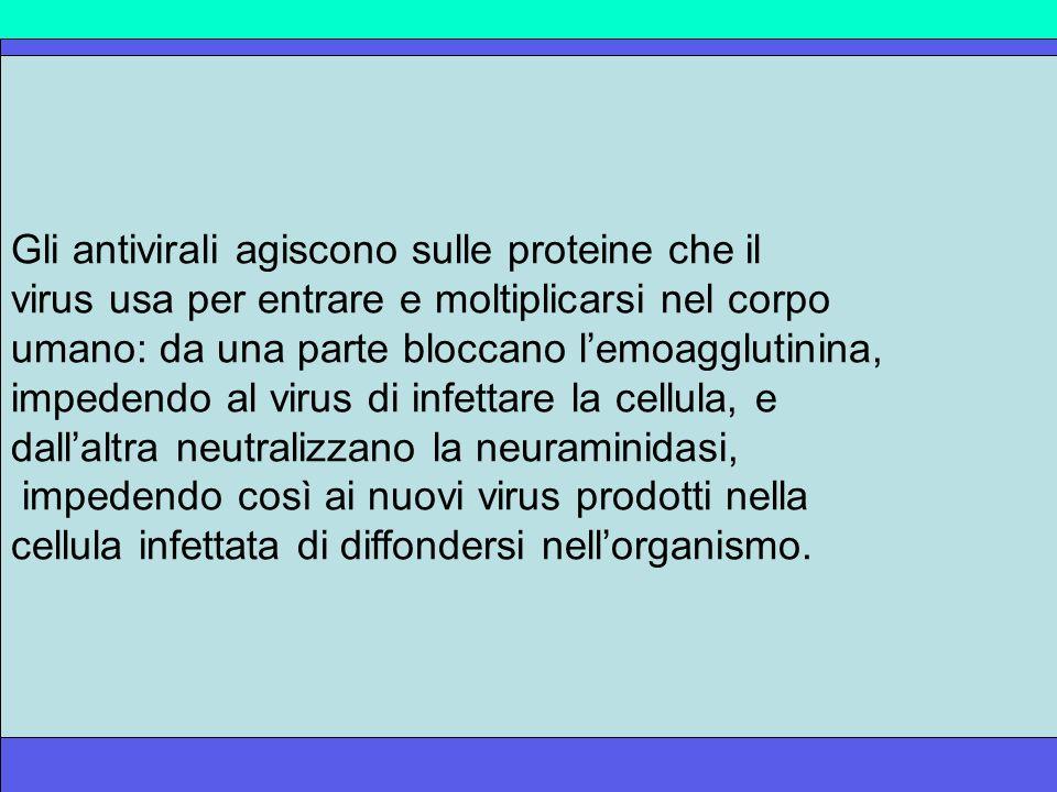 LH5N1 è resistente alla terapia con Amantadina ma è sensibile agli inibitori delle neuraminidasi I farmaci inibitori della neuraminidasi utilizzati so