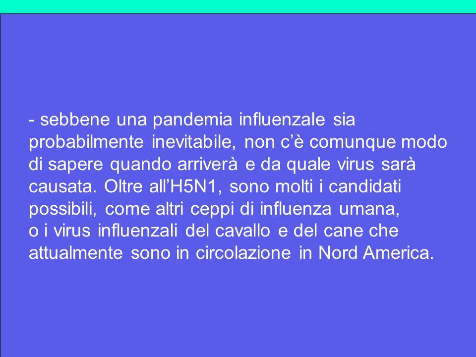 - sebbene una pandemia influenzale sia probabilmente inevitabile, non cè comunque modo di sapere quando arriverà e da quale virus sarà causata. Oltre
