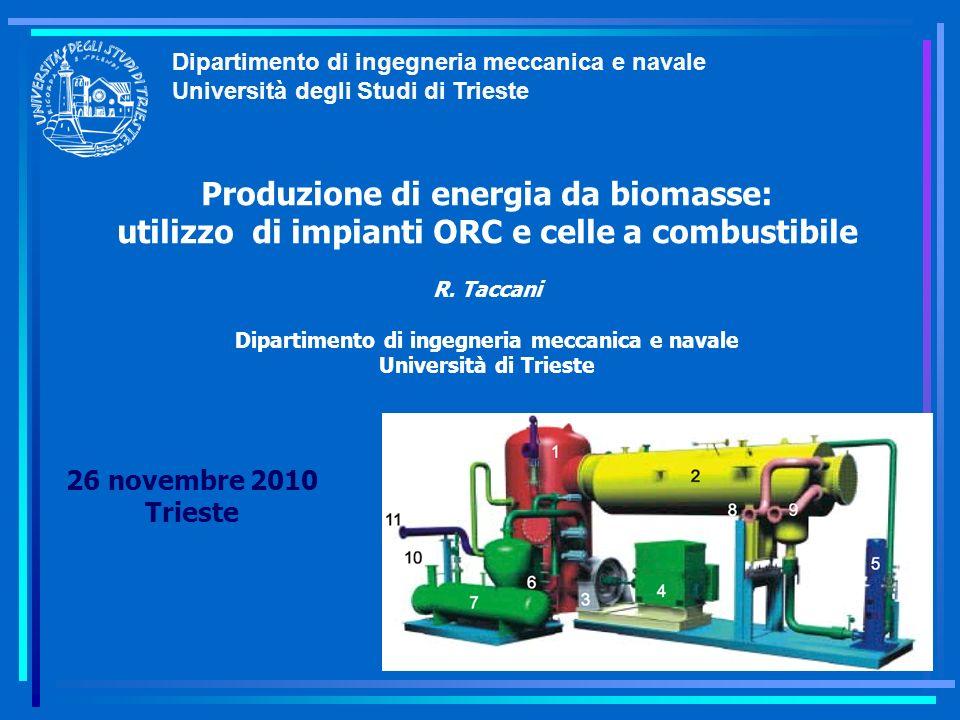 Dipartimento di ingegneria meccanica e navale Università degli Studi di Trieste Produzione di energia da biomasse: utilizzo di impianti ORC e celle a