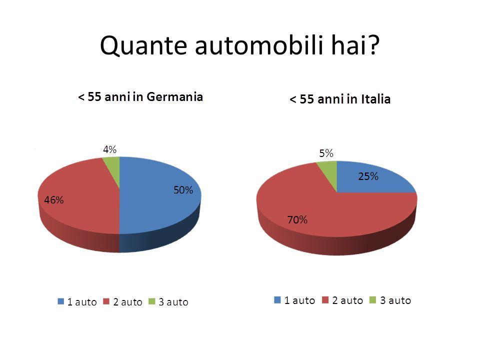 Quante automobili hai