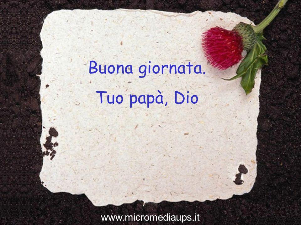 Buona giornata. Tuo papà, Dio www.micromediaups.it