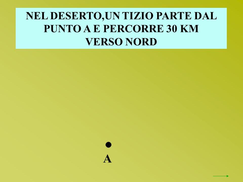 NEL DESERTO,UN TIZIO PARTE DAL PUNTO A E PERCORRE 30 KM VERSO NORD A
