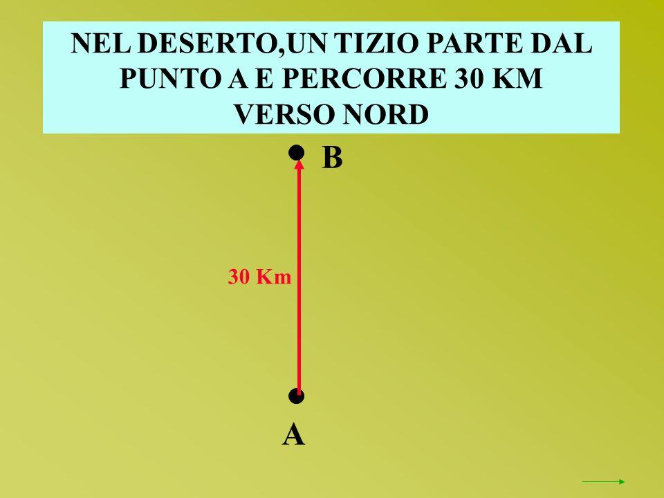NEL DESERTO,UN TIZIO PARTE DAL PUNTO A E PERCORRE 30 KM VERSO NORD 30 Km A B
