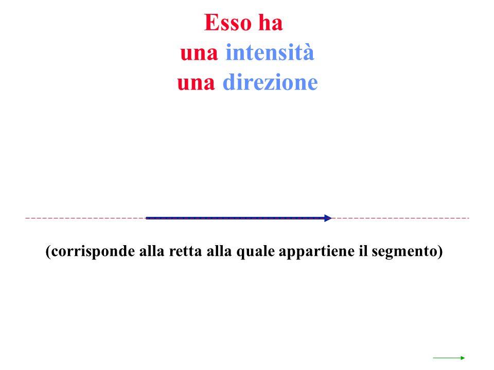 Esso ha una intensità una direzione (corrisponde alla retta alla quale appartiene il segmento)