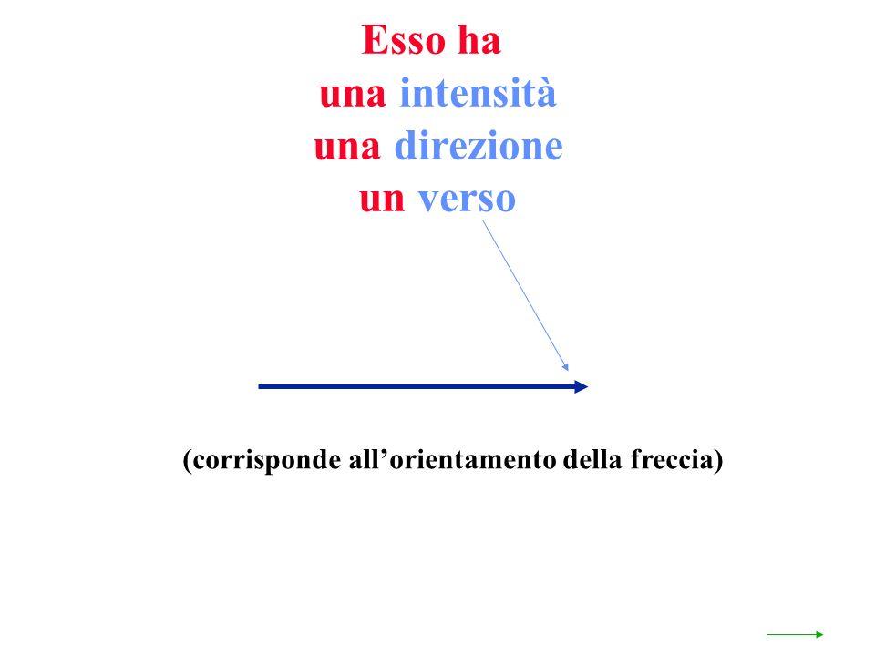 Esso ha una intensità una direzione un verso (corrisponde allorientamento della freccia)