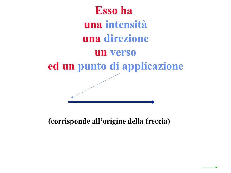 Esso ha una intensità una direzione un verso ed un punto di applicazione (corrisponde allorigine della freccia)