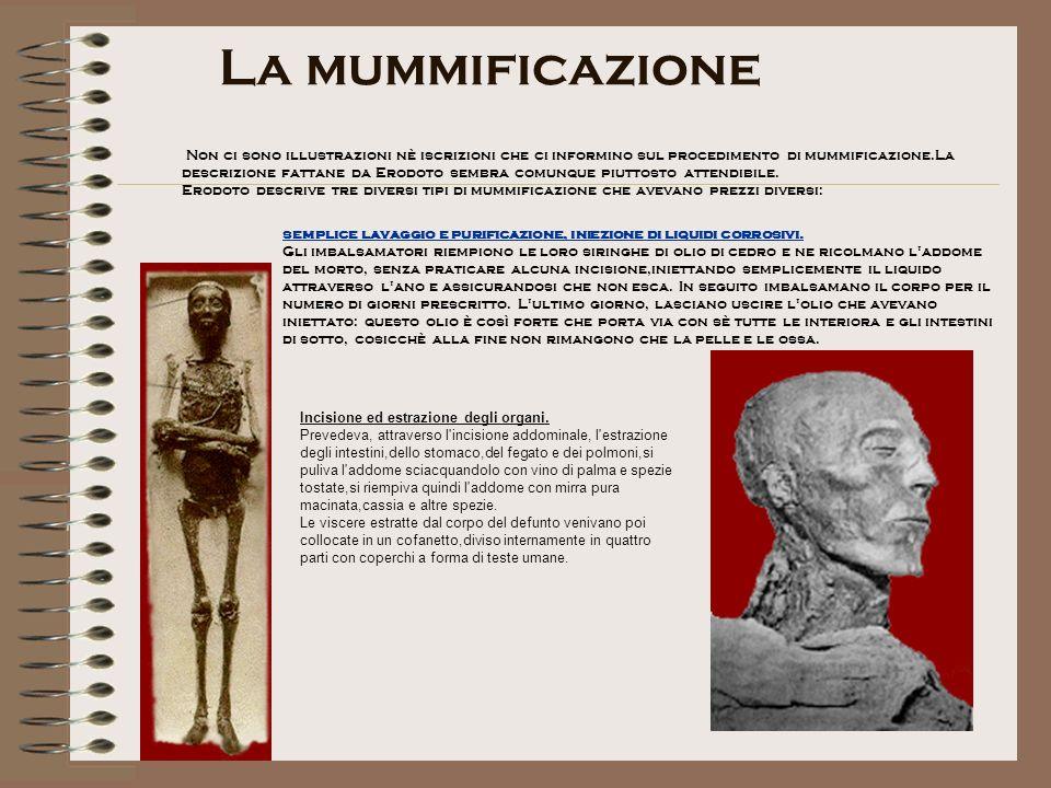 La mummificazione Non ci sono illustrazioni nè iscrizioni che ci informino sul procedimento di mummificazione.La descrizione fattane da Erodoto sembra