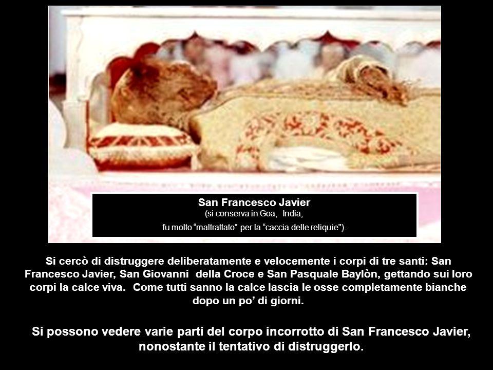 San Francesco Javier (si conserva in Goa, India, fu molto maltrattato per la caccia delle reliquie