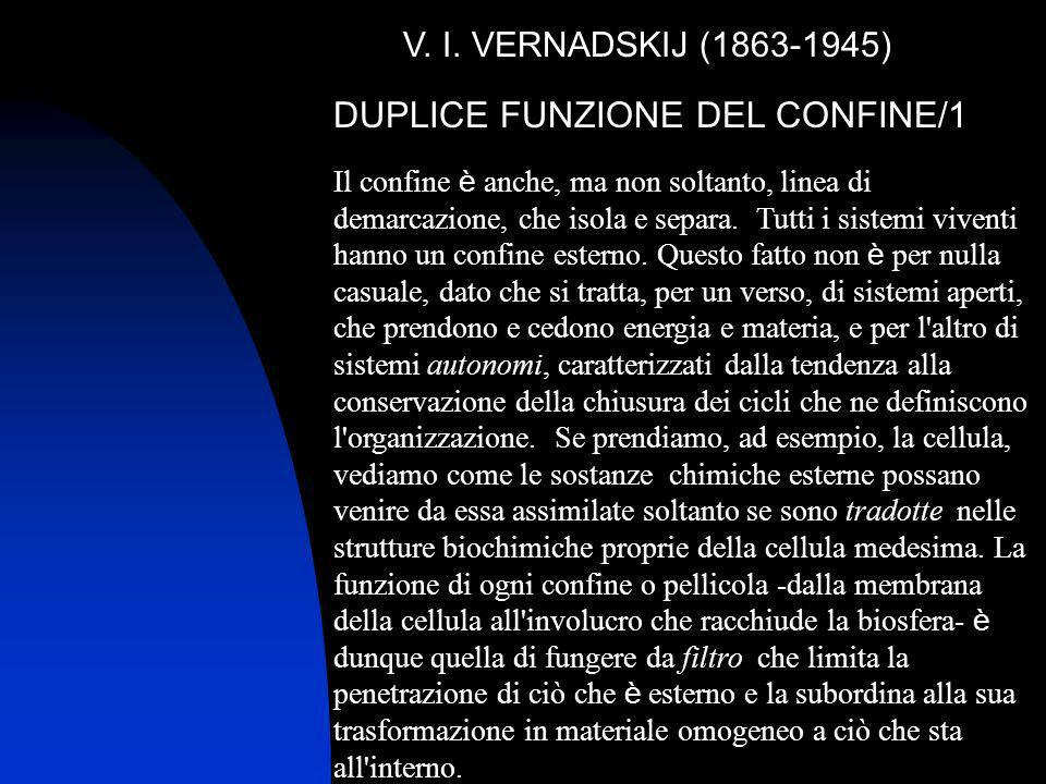 V. I. VERNADSKIJ (1863-1945) DUPLICE FUNZIONE DEL CONFINE/1 Il confine è anche, ma non soltanto, linea di demarcazione, che isola e separa. Tutti i si