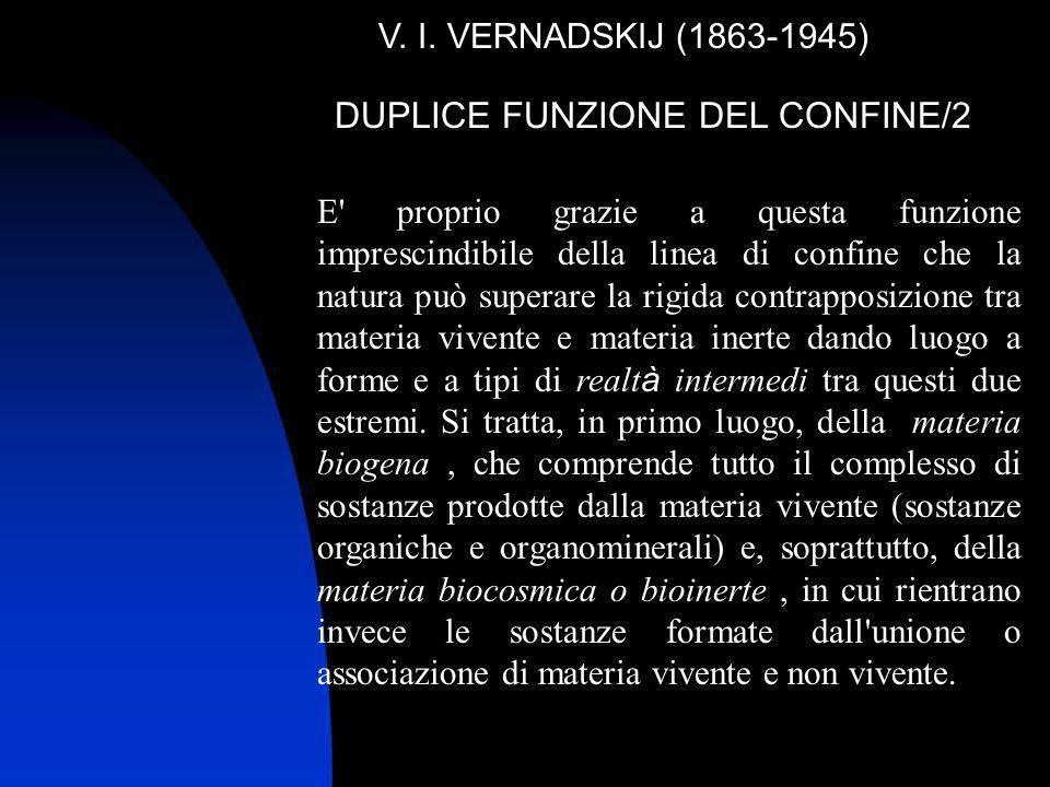 DUPLICE FUNZIONE DEL CONFINE/2 V. I. VERNADSKIJ (1863-1945) E' proprio grazie a questa funzione imprescindibile della linea di confine che la natura p
